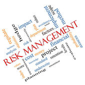 Risk Management Word Cloud Concept Angled — Stock Photo