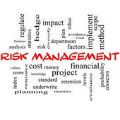 Risk Management Word Cloud Concept in red caps — Stock Photo