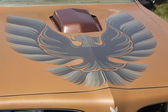 Pontiac Trans Am Copper Firebird Hood — Stock Photo