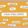 Stock Photo: Sales Executive Corkboard Word Concept