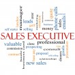 Foto Stock: Sales Executive Word Cloud Concept