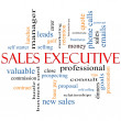 Stock Photo: Sales Executive Word Cloud Concept