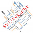 Stock fotografie: Sales Executive Word Cloud Concept Angled