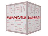 Concetto di Sales executive parola nuvola su un 3d cubo lavagna — Foto Stock