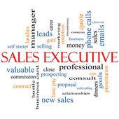 Sales Executive Word Cloud Concept — Стоковое фото