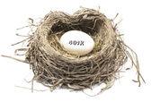 401 k の巣の卵 — ストック写真