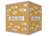 Stem Cells 3D cube Corkboard Word Concept — Stock Photo
