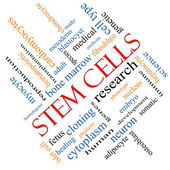 Stem Cells Word Cloud Concept Angled — Stock Photo