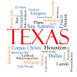 Texas State Word Cloud Concept — Stock Photo