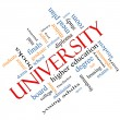 Stock Photo: University Word Cloud Concept Angled