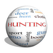 Hunting 3D sphere Word Cloud Concept — Stock Photo