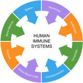 Immune System Word Circle Concept — Stock Photo