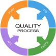 Quality Process Word Circle Concept — Stock Photo #41660349