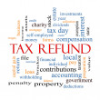 Tax Refund Word Cloud Concept — Stock Photo #42041775