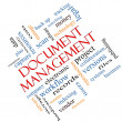 Stock Photo: Document Management Word Cloud Concept Angled