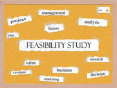 Feasibility Study Corkboard Word Concept — Stock Photo