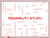 Feasibility Study Word Cloud Concept on a Whiteboard — Stock Photo