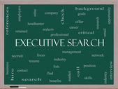 Executive Search Word Cloud Concept on a Blackboard — Stock Photo