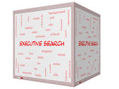 Executive Search Word Cloud Concept on a 3D cube Whiteboard — Stock Photo