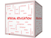 Special Education Word Cloud Concept on a 3D cube Whiteboard — Stock fotografie