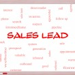 Sales Lead Word Cloud Concept on a Whiteboard — Stock Photo