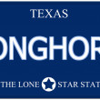Longhorn Texas Imitation License Plate — Stock Photo #43349321