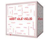 Zachodniego Nilu wirus słowo chmura koncepcja na 3d sześcian tablicy — Zdjęcie stockowe