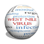 West Nile Virus 3D sphere Word Cloud Concept — Stok fotoğraf