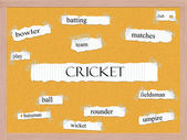 Cricket Corkboard Word Concept — Foto de Stock