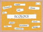 生态软木砖词概念 — 图库照片