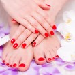 Manicure and pedicure — Stockfoto