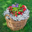 Stock Photo: Beautiful basket of flowers in the garden landscape