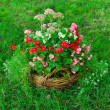 Beautiful basket of flowers in the garden landscape — Stock Photo #12561329