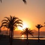 Sunset over the beach. — Stock Photo