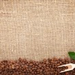 Stock Photo: Coffee beans on burlap background