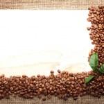 Menu Design.Old paper, coffee bean — Stock Photo