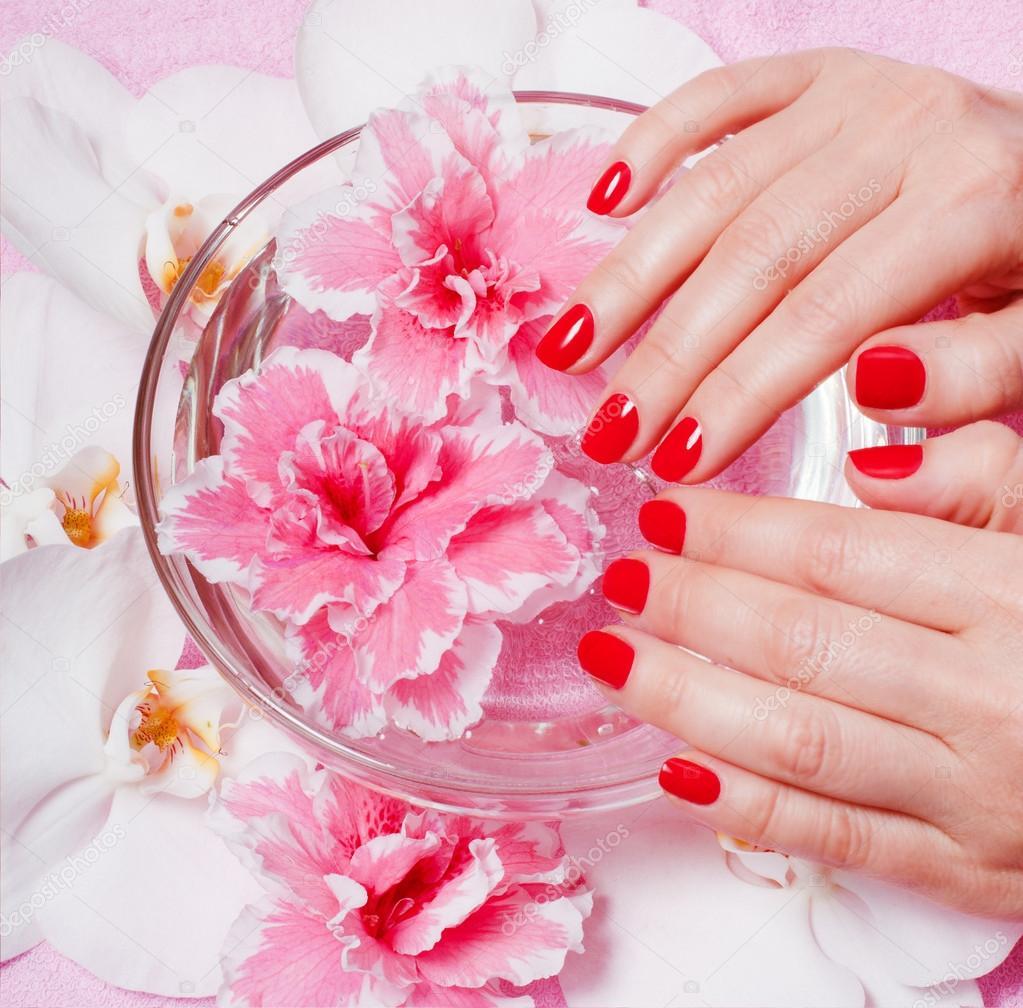 Красный с цветами фон