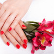 Royalty-Free Stock Photo: Closeup image of red manicure with flowers