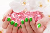 Beautiful manicure nail salon — Stock Photo