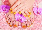 Manicure and pedicure — Stock Photo