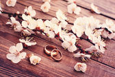 Wedding rings. Flowering branch flowers on wooden surface. — Stock Photo