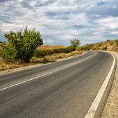 The wild road — Stock fotografie