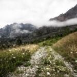 Picos de Europa — Stock Photo #12092253