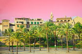 Balearen palma de mallorca — Stockfoto