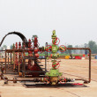 Production wellhead — Stock Photo