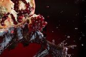 Splash of pomegranate — Stock Photo