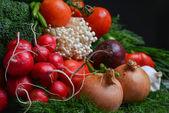 Radieschen tomaten zuckerrüben sprossen — Stockfoto