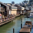 Stock Photo: Tourists observe selions at Pier 39 in SFrancisco