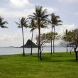 Beachfront park in Hawaii — Stock Photo