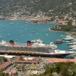 Постер, плакат: Disney Fantasy cruise ship aerial view